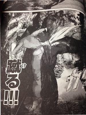 入江無一vs灰色熊