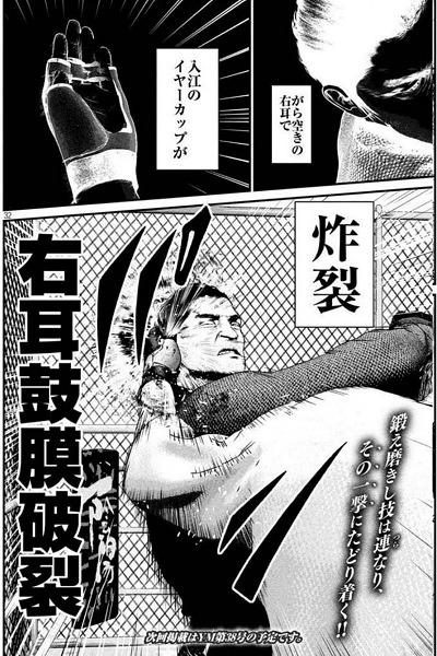 入江文学 イヤーカップ